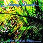 Album New wave de plage de Sunny Duval