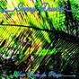 Album Dominos de Sunny Duval