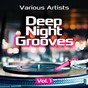 Compilation Deep night grooves, vol. 1 avec Kevin Mcgee / Carl Mikkelsen / Pax Amstell / Greg Armando / Michael Staggs...