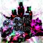 Album Reiki tribe de Reiki / Massage Tribe / Massage / Relajación