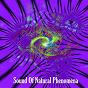 Album Sound of natural phenomena de Ambiente / Ambient Forest / Ambient Rain