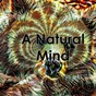 Album A natural mind de Relax Meditate Sleep / Nature Sound Series / Rain Sounds Sleep