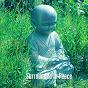 Album Surrounded in peace de Ambient Forest, Ambient Rain, Ambiente