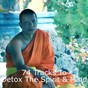 Album 74 tracks to detox the spirit & mind de Yoga Music, Yoga Soul, Yoga