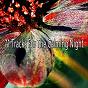 Album 71 tracks for the calming night de Smart Baby Lullaby