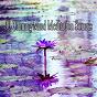 Album 50 calming mind meditation sounds de Meditation