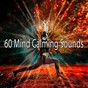 Album 60 mind calming sounds de Asian Zen Spa Music Meditation