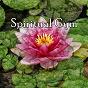 Album Spiritual Gym de Spiritual Fitness Music