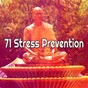Album 71 stress prevention de Asian Zen Spa Music Meditation