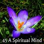 Album 45 a spiritual mind de Music for Reading