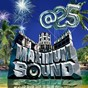 Compilation Maximum sound at 25 avec Alborosie / Capleton, Kabaka Pyramid / Duane Stephenson / Mr Vegas / Beenie Man, Voicemail...