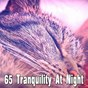 Album 65 tranquility at night de Trouble Sleeping Music Universe