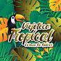 Compilation Viejoteca tropical / carmen de bolivar avec Anibal Velasquez / Los Melódicos / Los Corraleros de Majagual / Alejandro Durán & Andrés Landero / Los Melódicos & Cherry Navarro...