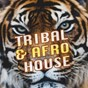 Compilation Tribal & afro house avec Cellos Balearica / Jason Rivas / Jason S Afro House Connection, Old Brick Warehouse / Jason Rivas, World Vibes Music Project / Die Fantastische Hubschrauber...