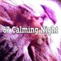 Album 67 calming night de Water Sound Natural White Noise