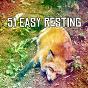 Album 51 easy resting de Spa Relaxation & Spa