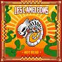 Album Not Dead de Les Caméléons