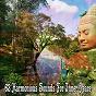 Album 63 harmonious sounds for inner peace de Music for Reading