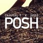 Album Posh (feat. 2po2) de Capital T