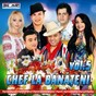 Compilation Chef la banateni, vol. 5 avec Rudy / Nicolae Guta / Tinu Veresezan / Denisa / Alex de la Orastie...