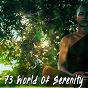 Album 73 world of serenity de Deep Sleep Meditation