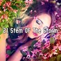 Album 21 Stem of the Storm de Rain Sounds & White Noise