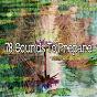 Album 78 sounds to prepare de Yoga Music
