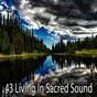 Album 43 living in sacred sound de Yoga Namaste