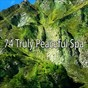 Album 74 truly peaceful spa de Serenity Spa Music Relaxation