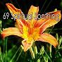 Album 69 spiritual soothing de Ocean Sound