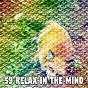 Album 59 relax in the mind de Einstein Baby Lullaby Academy