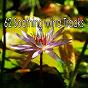 Album 62 soothing mind tracks de Meditation Spa