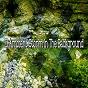 Album 23 ambient storm in the background de Rain Sounds & Nature Sounds