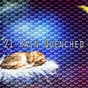 Album 21 rain quenched de Thunderstorms