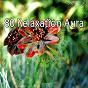 Album 80 relaxation aura de Rest & Relax Nature Sounds Artists