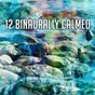 Album 12 binaurally calmed de Binaural Beats Brain Waves Isochronic Tones Brain Wave Entrainment