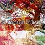 Album 29 storms gift of dreams de Ambient Rain