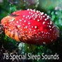 Album 78 special sleep sounds de Relaxing Music Therapy