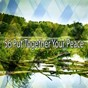 Album 56 Put Together Your Peace de Classical Study Music