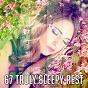 Album 67 truly sleepy rest de Dormir