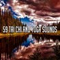 Album 59 tai chi and yoga sounds de Zen Music Garden