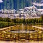 Album 69 Falling Yoga Pose de Meditation Zen Master