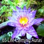 Album 65 life calming auras de White Noise Therapy