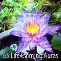 Album 65 life calming auras de White Noise Therapy