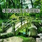 Album 48 consensus to meditation de Massage Therapy Music