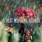 Compilation 41 rest inspiring sounds avec White Noise Babies