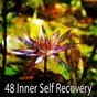 Album 48 inner self recovery de Guided Meditation