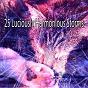 Compilation 25 luciously harmonious storms avec Thunderstorm Sleep