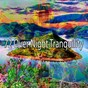 Compilation 72 Over Night Tranquility avec Ocean Sound