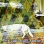 Album 39 comforting storms de Rain Sounds & White Noise